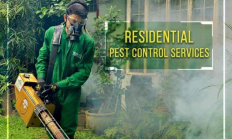 شركة مكافحة حشرات بالرياض-0539133954